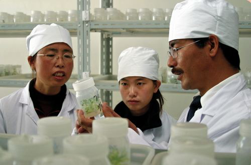 尼玛扎西(右一):西藏自治区农牧科学院党委副书记、院长
