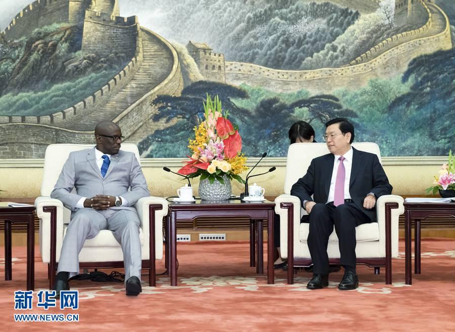 9月4日,全国人大常委会委员长张德江在北京人民大会堂会见布隆迪参议长恩迪库里约。
