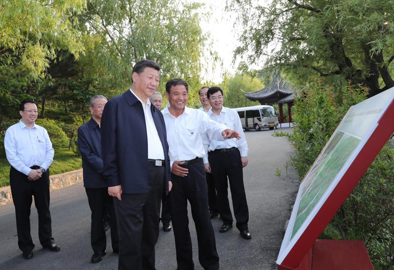 6月12日至14日,中共中央总书记、国家主席、中央军委主席习近平在山东考察。这是12日下午,习近平在威海考察华夏集团生态修复项目。