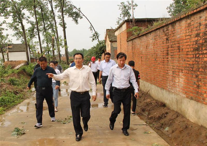 邓真晓(前中)在陶老乡察看因强降水和冰雹天气造成的灾害情况(5月17日摄)。新华社发
