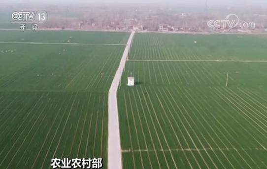 9号彩票农业农村部:今年至少创建8000万亩高标准农田