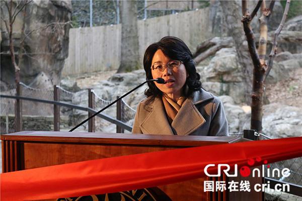 中国驻美国大使馆公使徐学渊在剪彩仪式上讲话。(摄影 刘坤)