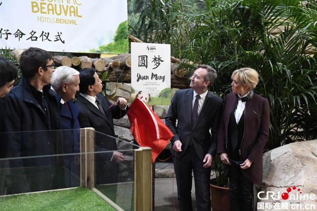 """法国第一夫人布丽吉特参加熊猫幼仔""""圆梦""""命名仪式"""