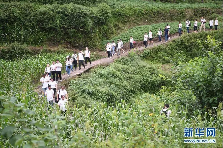 参加再走长征路记者团的记者在位于重庆市綦江石壕镇的当年中央红军走过的长征路上进行体验式采访(7月15日摄)。新华社记者 唐奕 摄