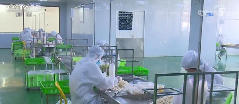 数据惊人 中西部28661个扶贫龙头企业复工率98%