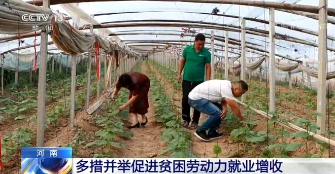 河南全面开展职业技能提升行动 帮助贫困劳动力就业