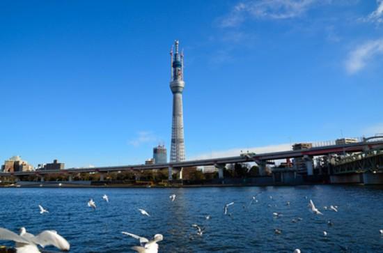 东京塔天空树通天阁!盘点日本十大名塔