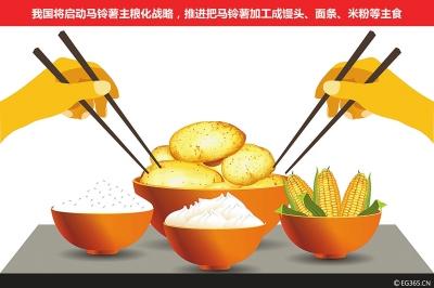 土豆的生长周期