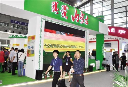 """""""中国科技第一展""""上的内蒙古元素"""