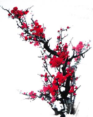 雪中的梅花(图)