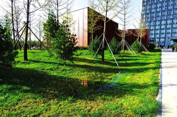建设海绵城市 倡导生态文明 助力美丽中国