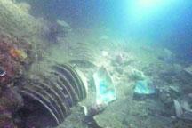 Mystery of sunken Ming Dynasty ship
