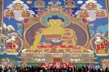 Tourists experience Tibet Shoton Festival