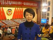 Tian Wei observations about this year´s CPPCC session