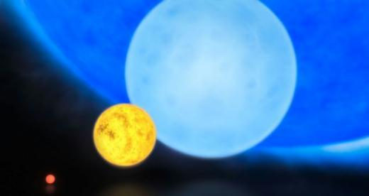 The smallest 'red dwarfs', low mass 'yellow dwarfs' such as the Sun, massive 'blue dwarf' stars weighing eight times more than the Sun, and the 300 solar mass star