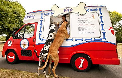 Two dogs enjoy one of the tasty K99 frozen treats from the world's first ice cream van for dogsWorld's first ice cream van for dogs in London.