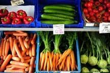 Russia extends import vegetable ban