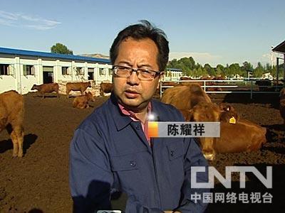兰州陈耀祥养羊:房地产商在偏僻山村的财富