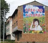 李宇春上计生宣传画肖像侵权