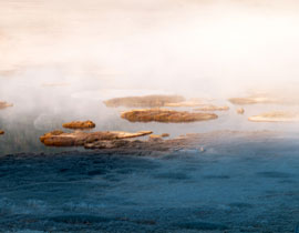 最美湿地 - wei1791 - 劲松部落