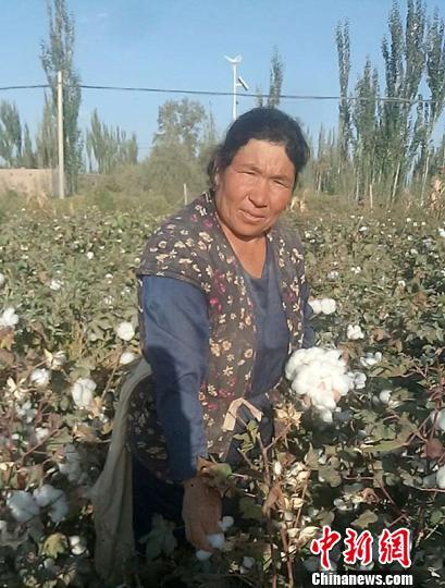 新疆兵团居民脱贫记:依靠勤劳双手过上富裕日子(图)