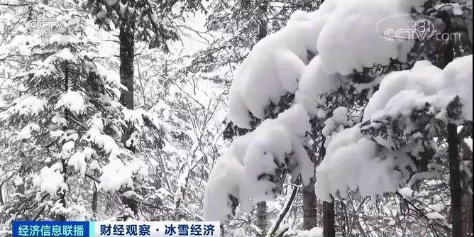 冰雪季暗藏千亿市场 多地冰雪旅游季已经开启