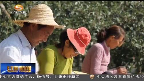 [金沙新闻]今年镇原苹果产量预计达11万吨