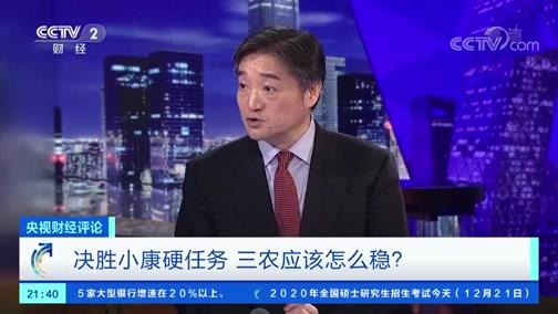 《央视财经评论》 20191221 决胜小康硬任务 三农应该怎么稳?