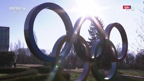 """[北京2022]张虹:节俭办赛 合理利用""""奥运遗产"""""""