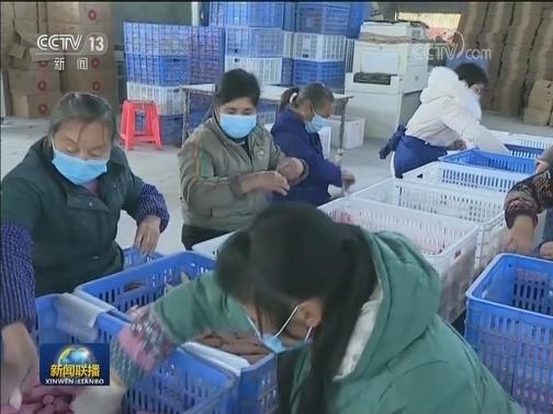 [视频]国务院扶贫办:做好疫情防控期间脱贫攻坚工作