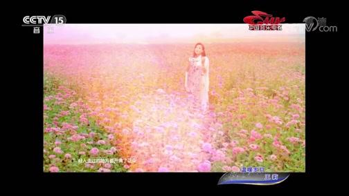 [中国音乐电视]歌曲《温暖岁月》 演唱:王莉