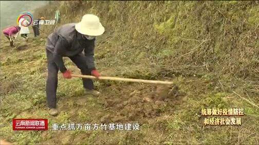 """[云南新闻联播]不误农时抓春耕 疫情防控与农业生产""""两不误"""""""