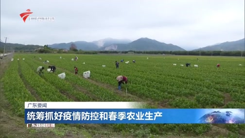 [广东新闻联播]统筹抓好疫情防控和春季农业生产