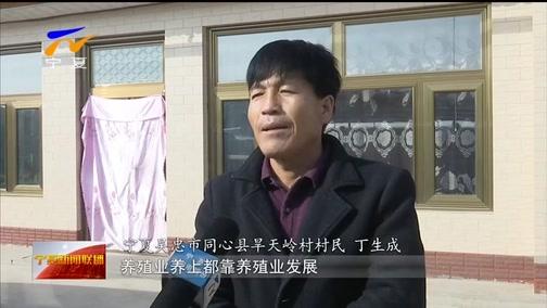[宁夏新闻联播]宁夏同心:春到旱天岭