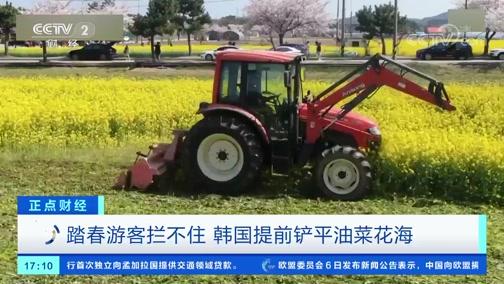[正点财经]踏春游客拦不住 韩国提前铲平油菜花海