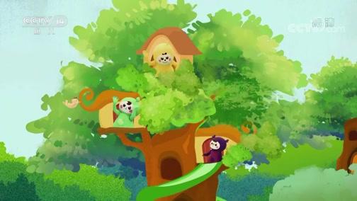 《小小智慧树》 20200512