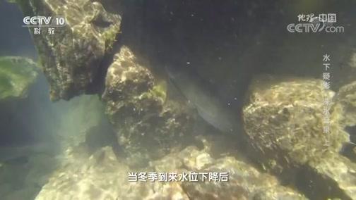 《地理·中国》 20200627 水下疑影·涞水奇泉 上