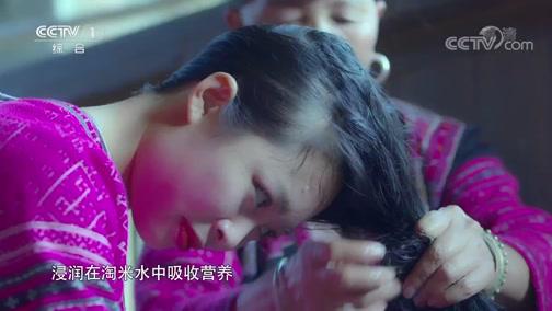 [中华民族]红瑶女子秀发的秘密在于草药熬制的淘米水