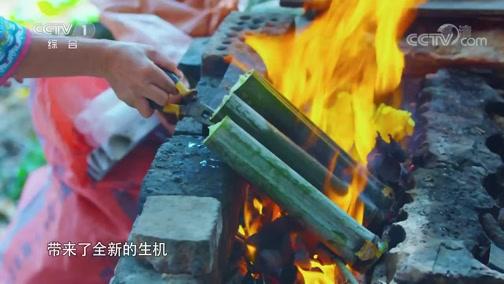 《中华民族》 20200707 遥远的地方 第三集 龙脊梯田