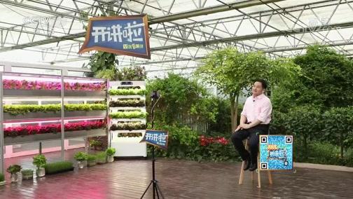 [开讲啦]青年提问杨其长:未来植物工厂将在哪些环节有新突破?