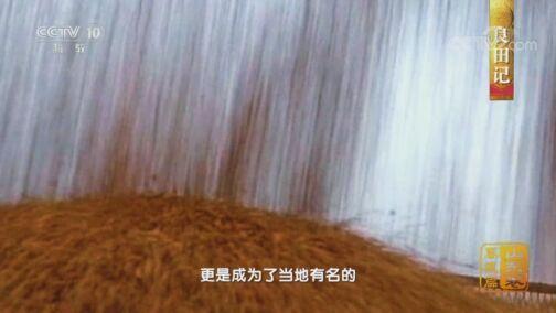 《中国影像方志》 第618集 山东禹城篇