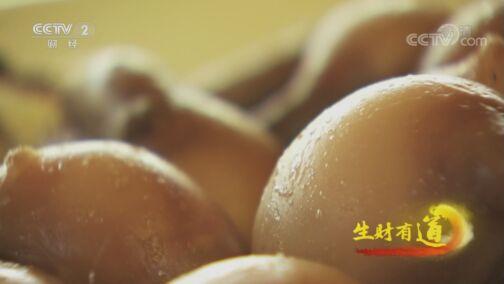 《生财有道》 20200804 生态中国草原行——马背之上 风情乌拉特