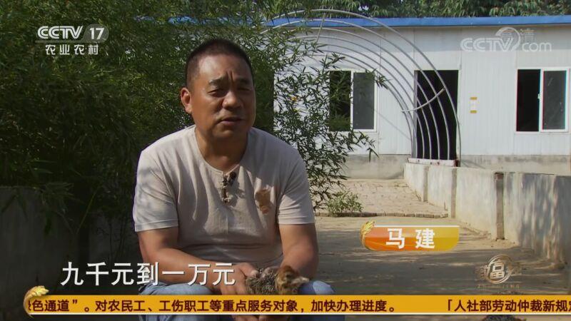 """[优妻视频高清缔造者经]""""鸵鸟谷""""里的多样财富20200904"""