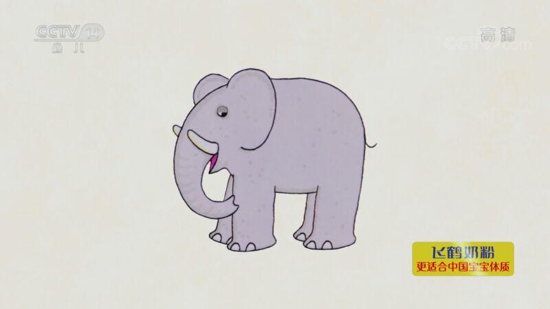 [小小智慧树]一起讲故事:《亲爱的动物园》