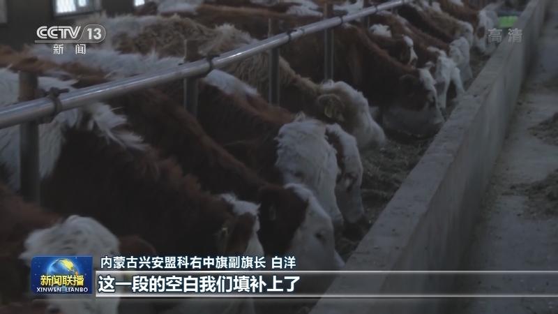 农业银行创新贷款助力农牧民脱贫致富