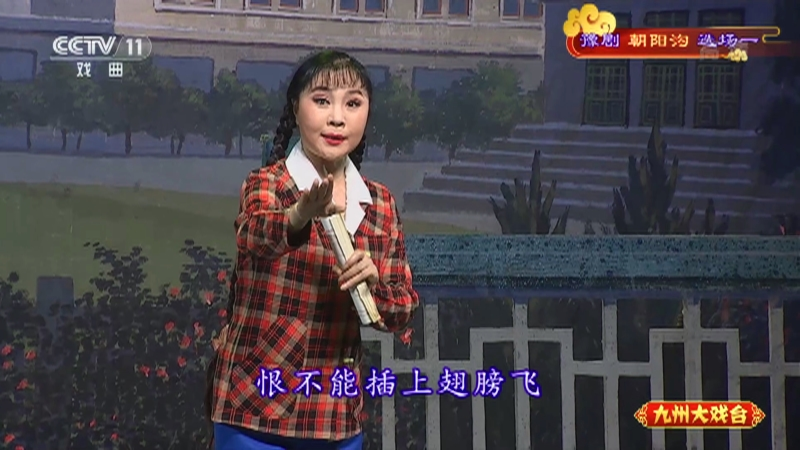 豫剧朝阳沟选场一 主演:杨红霞 盛红林 九州大戏台 20210417
