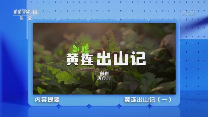 《创新进行时》 20210510 黄连出山记(一)