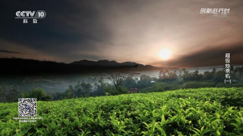 《创新进行时》 20210520 超级炒茶机(一)