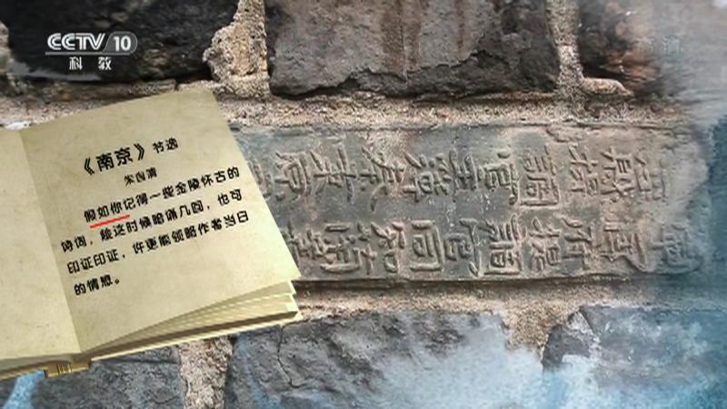 《跟着书本去旅行》 20210527 南京印象——南京城墙(下)