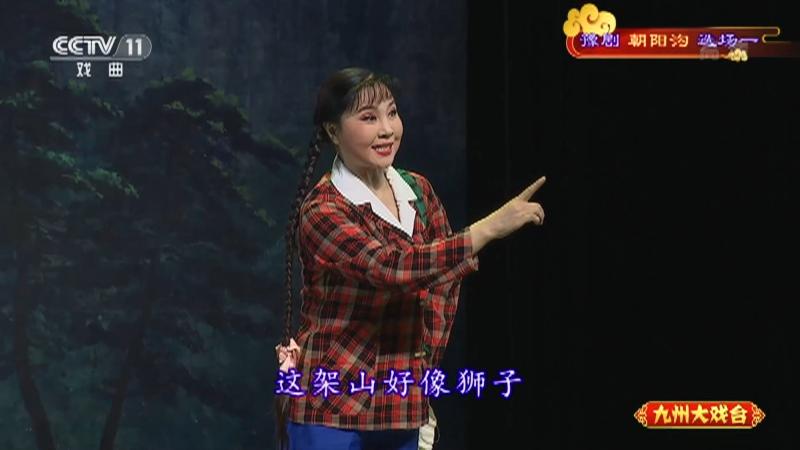 豫剧朝阳沟选场一 主演:杨红霞 盛红林 九州大戏台 20210625